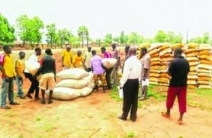 Продуктовая помощь для христиан, пострадавших от нападения вооруженных фулани