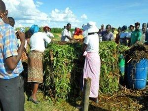 На учебной программе, проводимой при поддержке Фонда Варнава, участники учатся делать компост